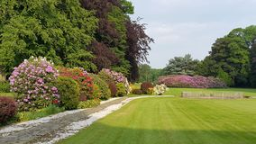 Вид на сад Стоковые Фото
