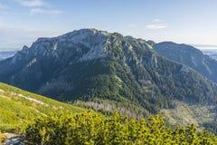 Видно пик западного Tatras Стоковая Фотография