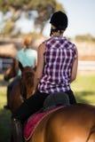 Вид сзади верховой езды женщины при друг сидя на лошади в предпосылке Стоковая Фотография