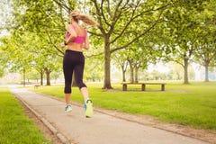 Вид сзади женщины бежать в парке Стоковое фото RF