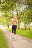 Вид сзади женщины jogging в парке Стоковое Фото