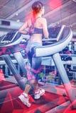 Вид сзади женщины jogging в третбане Стоковое Изображение RF