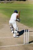 Вид сзади игрока сверчка практикуя на поле стоковые изображения rf