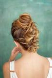 Вид сзади дизайна волос, прическа Ирокез цвета Брайна Стоковая Фотография RF