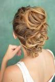 Вид сзади дизайна волос, прическа Ирокез цвета Брайна Стоковые Изображения RF