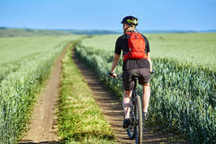 Вид сзади молодого велосипеда катания велосипедиста на дороге поля Стоковая Фотография RF
