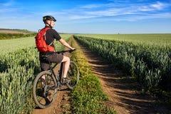 Вид сзади молодого велосипеда катания велосипедиста на дороге поля Стоковые Изображения RF