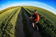 Вид сзади молодого велосипеда катания велосипедиста на дороге поля Стоковые Изображения