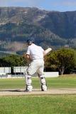 Вид сзади отбивающего мяч играя сверчка на поле стоковая фотография