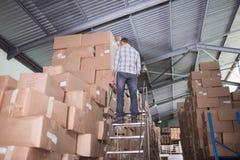 Вид сзади работника на лестнице в складе Стоковые Изображения RF