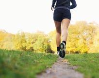 Вид сзади спортсмена женщины jogging в парке стоковая фотография rf