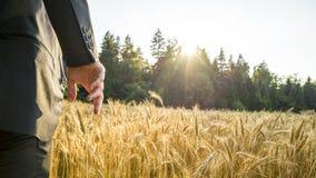 Вид сзади человека в элегантном костюме стоя в зреть золотое whe Стоковое Изображение RF