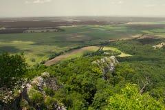 Вид с воздуха ландшафта сельской местности леса лета Стоковые Изображения RF