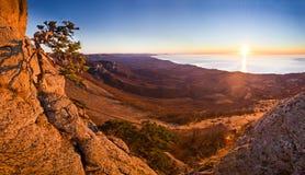Вид с воздуха дерева выдерживать в горах и Стоковые Изображения RF