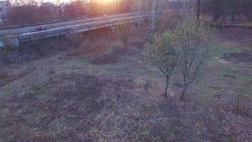 Вид с воздуха железной дороги в лесе сток-видео