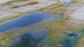 Вид с воздуха затопленных полей и озер на весне акции видеоматериалы