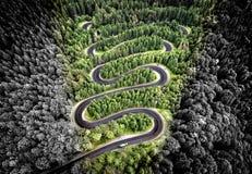 Вид с воздуха извилистой дороги в лесе Стоковая Фотография RF