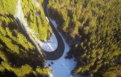 Вид с воздуха изогнутой дороги в лесе Стоковое Фото