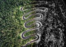 Вид с воздуха изогнутой дороги в лесе Стоковая Фотография RF