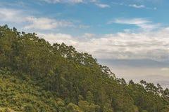 Вид с воздуха Кито от кабел-крана Стоковые Фото
