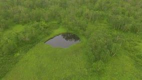 вид с воздуха Летать через озеро к вертолету Летать через treetops сток-видео