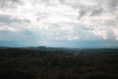 Вид с воздуха над зеленым лесом в вечере Пасмурная тайна Ландшафты Латвии Стоковые Фотографии RF