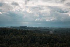 Вид с воздуха над зеленым лесом в вечере Пасмурная тайна Ландшафты Латвии Стоковые Изображения RF