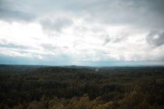 Вид с воздуха над зеленым лесом в вечере Пасмурная тайна Ландшафты Латвии Стоковое Изображение