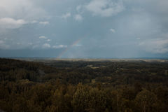 Вид с воздуха над зеленым лесом в вечере Пасмурная тайна Ландшафты Латвии Стоковая Фотография