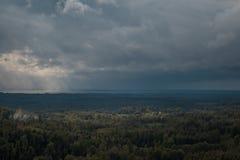 Вид с воздуха над зеленым лесом в вечере Пасмурная тайна Ландшафты Латвии Стоковое Изображение RF