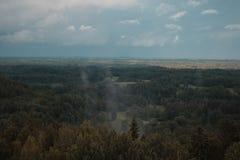 Вид с воздуха над зеленым лесом в вечере Пасмурная тайна Ландшафты Латвии Стоковые Изображения