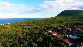 Вид с воздуха на красивом ландшафте, море, горах, лесе и голубом небе видеоматериал