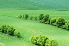 Вид с воздуха над полем Стоковое фото RF