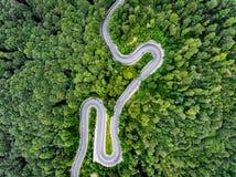 Вид с воздуха дороги в лесе Стоковая Фотография