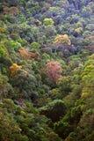 Вид с воздуха острова Langkawi Стоковое Изображение RF