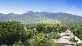 Вид с воздуха от высоты через листву тропических деревьев на горах Индонезия тюкованный сток-видео