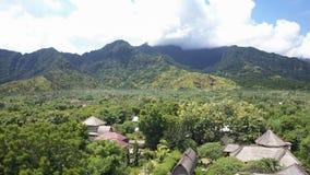 Вид с воздуха от высоты через листву тропических деревьев на горах Индонезия тюкованный акции видеоматериалы