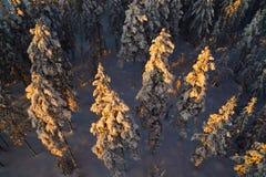 Вид с воздуха отделки Лапландии стоковое изображение