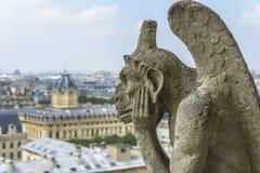 Вид с воздуха Парижа от Нотр-Дам Стоковое фото RF