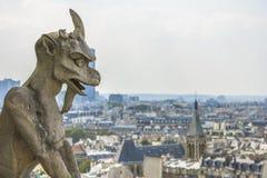 Вид с воздуха Парижа от Нотр-Дам Стоковое Изображение