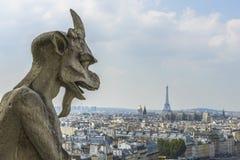 Вид с воздуха Парижа от Нотр-Дам Стоковые Фотографии RF