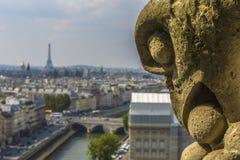 Вид с воздуха Парижа от Нотр-Дам Стоковые Фото