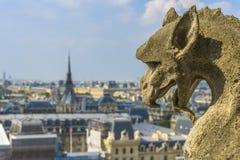 Вид с воздуха Парижа от Нотр-Дам Стоковые Изображения