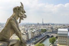 Вид с воздуха Парижа от Нотр-Дам Стоковое Изображение RF