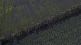 Вид с воздуха поля сверху весной стоковое изображение