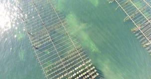 Вид с воздуха поля устрицы на юге  Франции видеоматериал