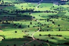 Вид с воздуха рисовых полей и дороги Стоковое фото RF