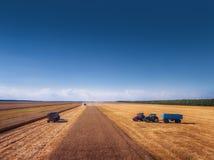 Вид с воздуха сбора машины земледелия жатки зернокомбайна Стоковая Фотография