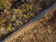Вид с воздуха следов поезда бежать через лес стоковое фото rf