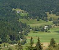 Вид с воздуха черного леса Стоковая Фотография